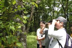 自然観察1.JPG