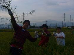 農業06.JPG