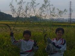 農業08.JPG