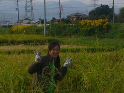 農業11.JPG