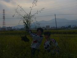 農業07.JPG