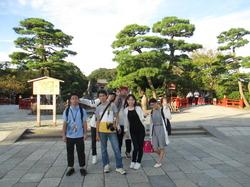 鎌倉8八幡宮.jpg