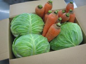 野菜.JPGのサムネイル画像