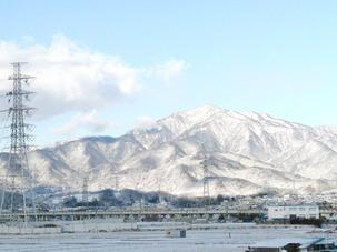 つばき雪 (1).JPG