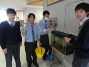 環境 金魚.JPG